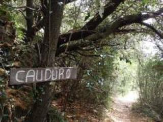 image de Babeau Bouldou - Cauduro